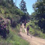 offers_trekkingweek_1