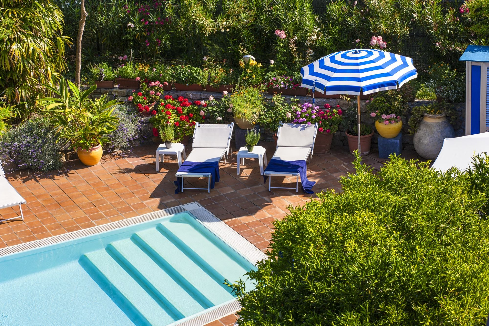 Spa & Swimming pool